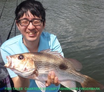 FISH TALES CHARTERS FINGERMARK ESTUARY FISHING .JPG