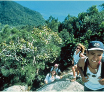 Take a walk up to the summit for 360° views of the breath taking Great Barrier Reef!