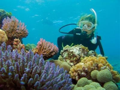 PORT DOUGLAS DIVE & SNORKEL ADVENTURES