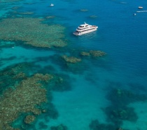 Visiting pure outer Great Barrier Reefs - 2 locations daily